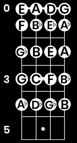 bass-money-notes