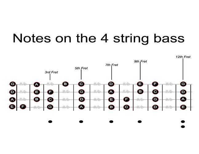 4  String Fret Board
