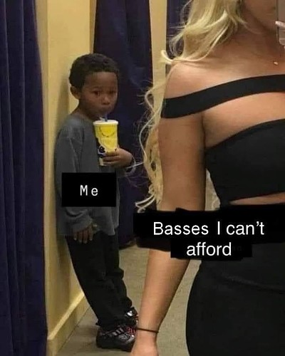 basses I can't afford