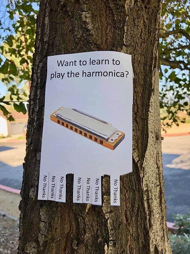 want-to-learn-how-to-play-harmonica-473760